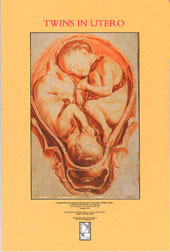 Twins In Utero Poster